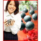 ★最大40倍+500円クーポン★ 高級ゲルマボール10個 ゲルマニウム温浴 ゲルマニウム温浴ボール