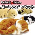パーフェクトペット  本物そっくりに眠るぬいぐるみ 居眠りぬいぐるみ 動くぬいぐるみ うごくおもちゃ 犬 ねこ Perfect Petzzz 猫ちゃん わんちゃん