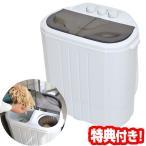 小型二槽式洗濯機 別洗いしま専科2 RCWASHR4 2槽式小型洗濯機 コンパクト洗濯機 ミニ洗濯機 洗浄器 脱水器