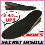 ★最大40倍+500円クーポン★ シークレットインソール 女性用 身長アップ  インソール 普通のくつが シークレット靴になる