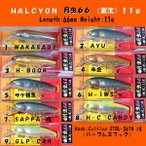 HALCYON SYSTEM ハルシオン システム 月虫66 (激沈) 11g