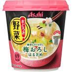 アサヒグループ食品株式会社 おどろき野菜 梅おろし 22.2g