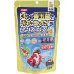 イトスイ 金魚の主食 納豆菌 中粒 200g