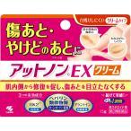 【第2類医薬品】小林製薬 アットノンcEX クリーム 15g