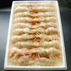 Shrimp - 希少な海老 お刺身用 おにえび(船内冷凍)大サイズ(浜坂産)(オニエビ、ゴジラエビ、鬼海老)