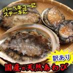訳あり・天然あわび(冷凍)1個 約250-300g 国産(山陰浜坂産)ステーキに バーベキューに(アワビ、鮑)