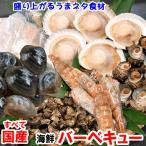 国産海鮮バーベキューセット6種入(冷凍)変わりダネ食材で楽しく!(さざえ、サザエ、いか、イカ、ホタテ、bbq、ホンビノス、モサエビ、亀の手)
