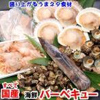 国産海鮮バーベキューセット6種入(冷凍)変わりダネ食材で楽しく 希少なオニエビ入 (さざえ、サザエ、いか、イカ、ホタテ、帆立、bbq)