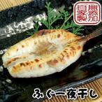 Puffer - 真フグ一夜干し(冷凍) 2尾(約200-230g程度)(兵庫浜坂産)(河豚・ふぐ・干物・開き)
