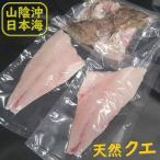 天然クエ 3枚おろしとアラのセット(まるまる1匹分)(冷凍) 調理前原体約2.8kg (山陰浜坂産)