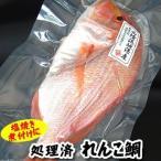 天然れんこ鯛 1尾 約24-26cm (生冷凍・調理済) (浜坂産) (れんこだい、れんこたい、レンコダイ、レンコ鯛、連子鯛、黄鯛)