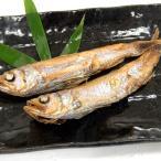 さんごいわし丸干し(冷凍)約300g(愛知県産)深海に潜む希少ないわし(サンゴイワシ、干物・鰯、イワシ)
