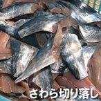 訳あり・寒ざわら切り落し(切れ端)(冷凍)約500g入(浜坂産)一年で最も脂がのった時期のサワラです (寒ザワラ・サワラ・鰆・魚・切身・切れはし・不揃い)