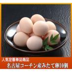 産みたて卵:名古屋コーチン松風地鶏の有精卵10個