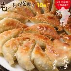 もっちり餃子10個入 お試し 宮崎産牛豚・北海道産小麦