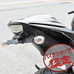 フェンダーレス キット キットNinja250R JBK-EX250K Ninja250R EX250K ニンジャ250R 08-12 LEDナンバー灯 ナンバーステー ライセンス灯 SMDナンバー灯