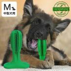 犬用歯ブラシ 360°設計 噛んで遊びながら歯磨き 犬 歯磨き 歯みがき デンタルケア おもちゃ Mサイズ 中型犬用 送料無料 【代金引換不可】