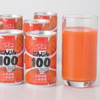 北海道産 ふらの にんじん100 30缶 送料無料