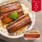 浜名湖産 うなぎ蒲焼 缶詰 100g 固形量90g ×5缶 食品 魚介類 シーフード ウナギ 蒲焼き  送料無料