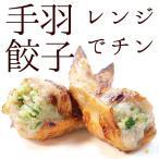 セール 焼き手羽先餃子(手羽餃子/てばぎょうざ/手羽先ギョーザ) 5本 レンジでチン 冷凍 骨付き肉 業務用 人気 唐揚げ 惣菜