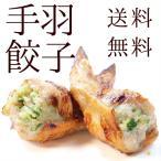 ショッピング餃子 送料無料 手羽先餃子 選べる4種 お試しセット(20本)焼き鳥屋の手羽先お惣菜!