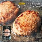 ハンバーグ 冷凍 100g×10 EMO牛 有田牛 国産牛 牛肉 宮崎県産 黒毛和牛 お取り寄せ 人気には訳あり 食品 グルメ ギフト