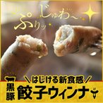 送料無料 ぎょうざのウィンナー 黒豚餃子ウィンナー 20g×20個  冷凍