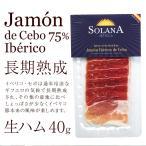 おつまみ イベリコ豚生ハム 最高級ハモンイベリコ24ヶ月以上熟成 40g