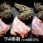 ワニ肉 ワニ手羽 クロコダイルハンド クロコダイル爪 鰐 爪付き1本 約300-375g オーストラリア産 冷凍 バーベキューや、ホームパーティーに衝撃を