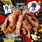 500えん 送料無 ポイント消化 食品 おつまみ 広島名物 揚げホルモンミックス 牛 40g お試し 簡易包装 訳あり食品 肉