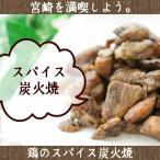 送料無料 宮崎名物焼き鳥 鶏のスパイス炭火焼50g×2 おつまみ 珍味