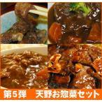 【第5弾】激安!天野 お惣菜 セット! 牛すじ煮込みに、牛しゃぶカレー、本格ビーフシチューにトンテキまで全部入り!