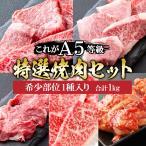 ショッピング肉 肉 牛肉 A5ランク 黒毛和牛 訳あり 焼肉 バーベキュー セット 1kg 国産 A5等級 焼き肉 BBQ