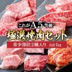 父の日 プレゼント 肉 牛肉 A5ランク 和牛 極上 焼肉 5種盛り 焼肉セット 1kg 国産 A5等級 高級 焼き肉 BBQ バーベキュー
