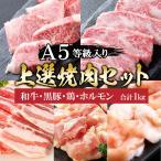 父の日 プレゼント 肉 牛肉 A5ランク 和牛 焼肉 3種盛り 焼肉セット 1kg 国産 A5等級 高級 焼き肉 BBQ バーベキュー