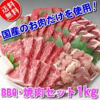 焼き肉 焼肉 BBQ バーベキュー用肉セット 1kg「約4〜5人前」国産肉の焼肉セットが送料無料。焼肉タレ1本おまけつき(沖縄・北海道は別途送料要)