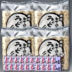 包丁切り冷凍讃岐うどん(太麺・つゆ付) 20食入