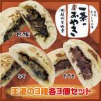冷凍 おやき 王道の3種(野沢菜、なす、小豆)各3個セット 一茶のそばおやき