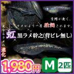 メダカ/虹・黒ラメ幹之背びれ無しメダカ Mサイズ2匹