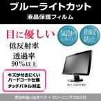 Dell ST2010-BLK ブルーライトカット 反射防止 指紋防止 気泡レス 液晶保護フィルム