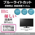 LGエレクトロニクス Smart TV 22LB491B ブルーライトカット 反射防止 指紋防止 気泡レス 液晶保護フィルム