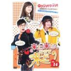 来た来た、マジで来た 14(第40話〜第41話)【字幕】 レンタル落ち 中古 DVD  韓国ドラマ