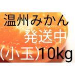 (送料無料)(温州みかん10kg)佐賀の美味しい温州みかん極早生(訳ありご家庭用傷ありミカン)(送料無料は東北、沖縄、北海道を除きます)