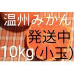 (送料無料)(小玉みかん10kg)佐賀の甘くて美味しい温州みかん(訳ありご家庭用)(送料無料は東北、沖縄、北海道を除きます。)