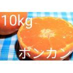 (送料無料)(ポンカン・10kg)佐賀の甘くて美味しいポンカン(10kg)(訳ありご家庭用傷あり・ぽんかん)(送料無料は東北、沖縄、北海道を除きます。)