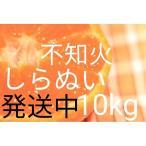 (送料無料)(しらぬい・10kg)佐賀の甘くて美味しい不知火(10kg)(訳ありご家庭用みかん・デコポンと同品種)(送料無料は東北、沖縄、北海道を除きます。)