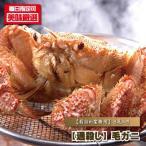 【送料無料】【通殺し】毛ガニ/業務用8尾パック