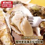 牡蠣 生食 殻付き北海ミルク牡蠣 カキ かき 期間限定