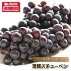 ぶどう スチューベン 送料無料 津軽スチューベン 1kg前後 ブドウ 葡萄