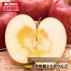 りんご 訳あり ご家庭用 津軽の完熟葉とらずりんご 3kg箱(8個-12個) 送料無料 リンゴ 林檎 ふじ フジ